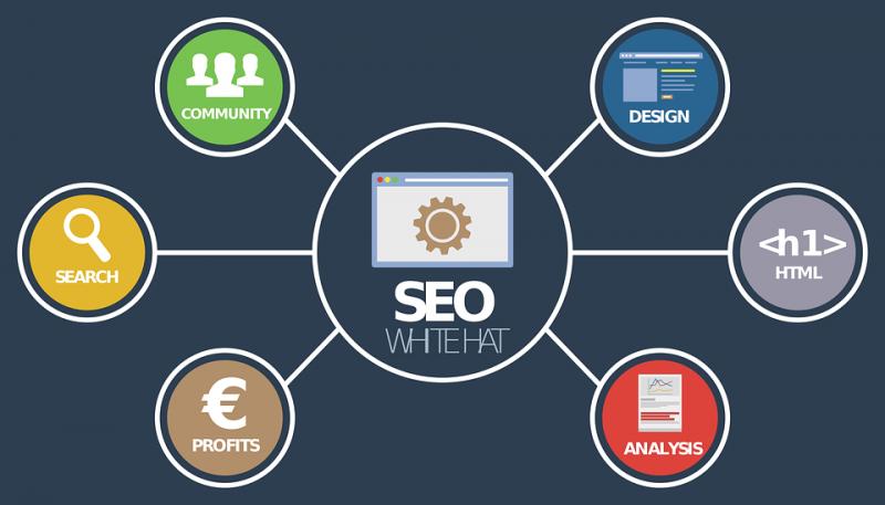 Alasan Penting untuk Membangun Off Page SEO Website dan Hal yang Harus Dihindari